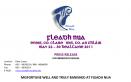 Fleadh Nua 2011 (Post Press Release)