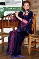 Offaly Fleadh 2009