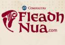 Fleadh Nua 2015