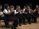ComhaltasLive #415-3: Templeglantine Céili Band