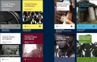 Design Guidelines for Fleadh Programmes